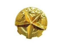 Rozeta zlatá 14 mm na uniformu